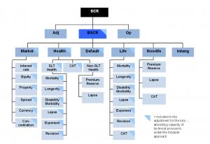 SF risk hierarchy